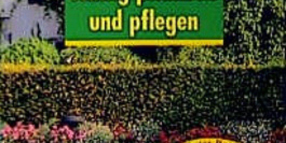 Hecken richtig pflanzen und pflegen