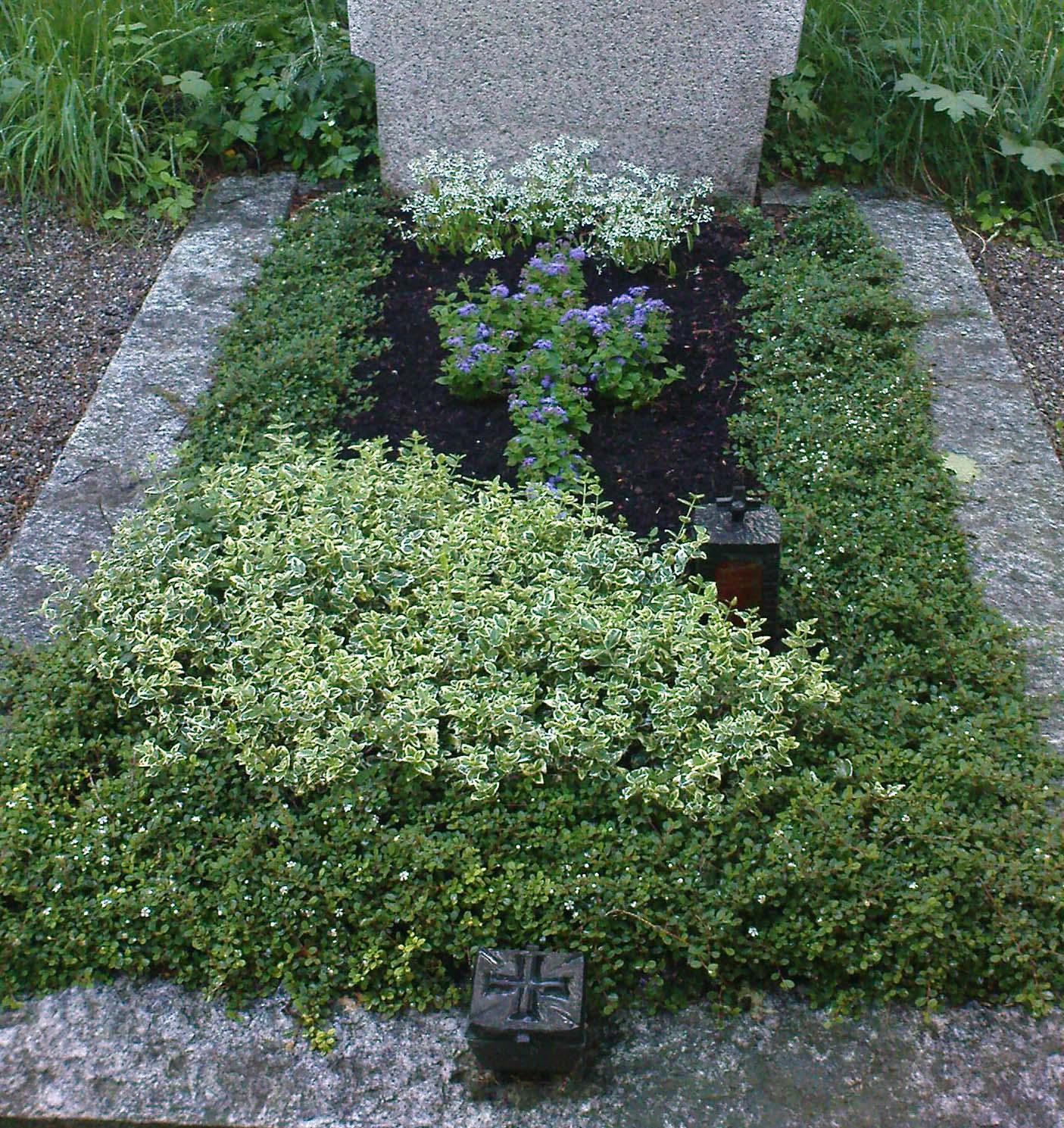 Grabpflanzen Gartnerei Probstl